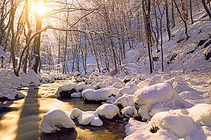 Weihnachtszauber im Polnischen Riesengebirge