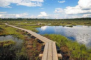 Wildes Estland (Wandern in schönster Natur)