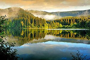 Der Harz und seine Schätze