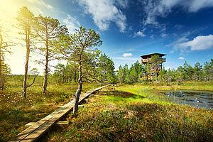 Die baltischen Nationalparks