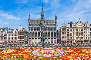 Bezaubernder Blumenteppich in Brüssel