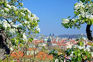 Frühlingstrip nach Prag