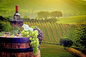Wein, Prosecco & der Garten von Venedig