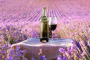 Lavendel, Wein & Römische Baukunst: Ein Hoch auf die Provence