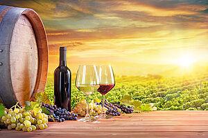 Die Welt des Luxemburger Weines