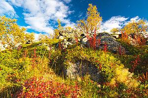 Bunter Herbst in Småland